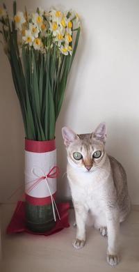 大晦日、夕日に染まる富士に1年の感謝☆ - 八巻多鶴子が贈る 華麗なるジュエリー・デイズ