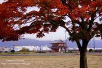 奈良旅行*平城宮跡* - *花音の調べ*