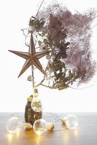 クリスマスツリー(写真部門) - 家族の風景