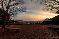 ベンチのある風景(さえずりの森) - Trimming