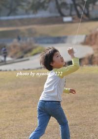 凧あげ日和 - nyaokoさんちの家族時間