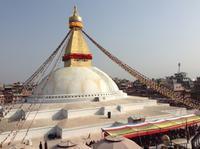ネパール、ボダナート・ストゥーパ - アーバン・ガーデン・ウォッチング