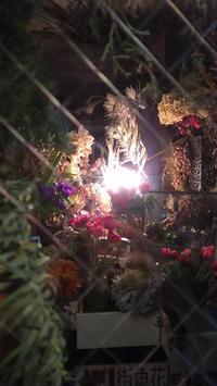 久しぶりにライトオン。 - 空の下が始まりでした♪街角花屋フロラリ*そしてmaisonへ♪2016年アトリエに