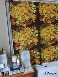今年最初のお客様 - Bloom のんびり日記