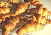 クロワッサン練習 - ~あこパン日記~さあパンを焼きましょう