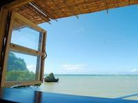 青い空・海・そして川 in 沖縄 - 健気に育つ植物たち