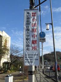 第93回箱根駅伝 往路 - おてんばみぃことねこじゃらし。