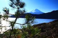 29年1月の富士 番外編 松の内 - 富士への散歩道 ~撮影記~