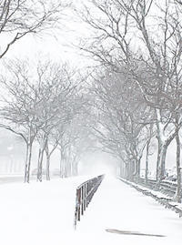雪景色 in Brooklyn - NY/Brooklynの空の下