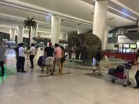 デリー、インディラガンディー空港 国内線乗り継ぎは要注意 - インドに行きたい