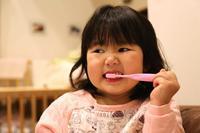 歯みがき - むすめ、むすこのフォトブログ