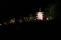 29年1月の富士 番外編 初詣 - 富士への散歩道 ~撮影記~