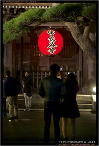 鎌倉長谷寺ライトアップ Part 1 - TI Photograph & Jazz