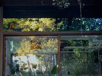 今年もよろしくお願い致します - 自 然&建 築  Design BLOG