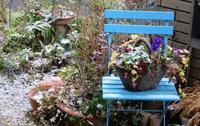 大雪にならなくて良かった - ひだまりの庭 ~ヒネモスノタリ~