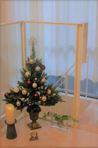 こうさぎのクリスマスツリー - 雫の熱は奪われて狭いオーロラに溶ける