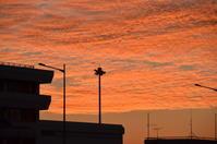 鹿児島空港での朝日など - 思い立ったが吉日