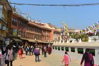 ネパールの広場 - アーバン・ガーデン・ウォッチング