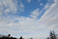 午前中は、いいお天気でした - むーちゃんパパのブログ 3