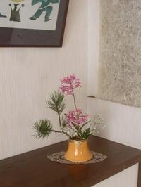 正月花部屋毎に設えて - 活花生活(2)