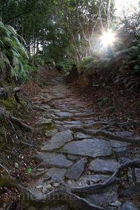 熊野古道馬越峠 - みちはた写真館フォトギャラリー