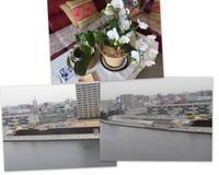 17-01-09(月) さんれんきゅう - 阿字観徒然記