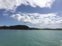 ただいま〜! ワイヘキ島!! - ニュージーランド田舎暮らし・島暮らし「Waiheke便り」