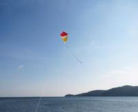 続々「彦一凧」を海で揚げる - ちょい古道具ライフ