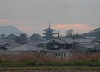斑鳩町 法隆寺 夕景 - 魅せられて大和路