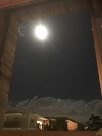 月は蟹座で満月に。 - プランテプラネットのブログ。ここからもうちょっと