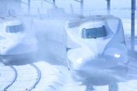 雪の彩り - PTT+.