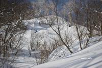 冬病。[自由部門] - ミンタランド