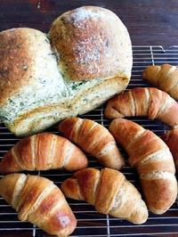 ほうれん草食パン/ティラミスロールパン - Lammin ateria