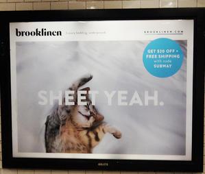 NYの地下鉄で見かけた可愛い猫ちゃんの広告ポスター - ニューヨークの遊び方