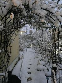 雪 雪 雪  落花生のリース作り - momopororonの優しい気持ちになれるもの