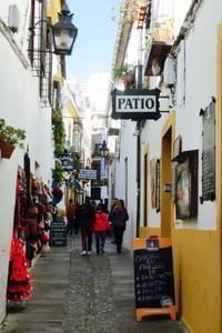 2016クリスマス休暇-南スペイン世界文化遺産探訪ーコルドバ 2 - Mitokoのパリ日記