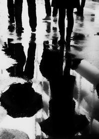 雨の日 - haze's photos