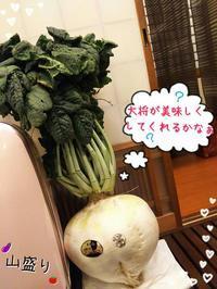 さくらじま大根(^^) - 旬菜和食山盛り 長浜だより