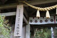 文殊仙寺 11月25日 - 光と影のさがしもの