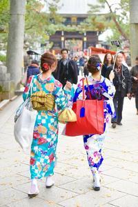 五臓六腑と最強寒波 - 写真家 田島源夫ブログ『しゃごころでっしゃろ!』
