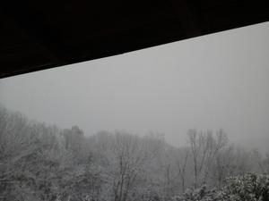 雪 - とほほ