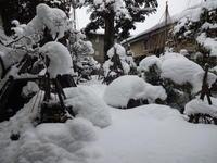 寒波到来 すっかり雪国に - 漆器もある生活