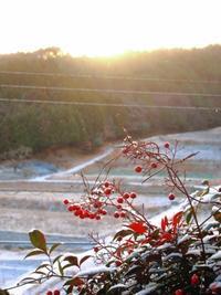 雪が降る - 葡萄と田舎時間