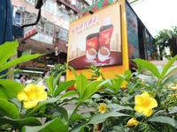 花に声は無いけれど - ほんこん どんなん  ~  Our Hometown is HK  ~