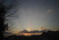 夕方の散歩(3cut) -     ~風に乗って~    Present