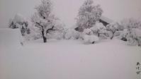 大雪警報 - あけびのあ