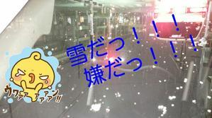 雪だっ!!!嫌だっ!!! - 岐阜/柳ヶ瀬【スナックM】和服ママの待つお店