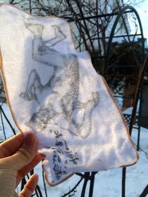 再び北海道  - ヤマザキマリ・Sequere naturam:Mari Yamazaki's Blog