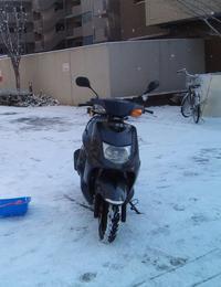明日からの新(?)通勤バイクです - 60代も元気に楽しむバイクライフ