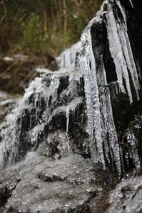 今季最強寒波の中、金剛山へ! - デジタルフォト日記